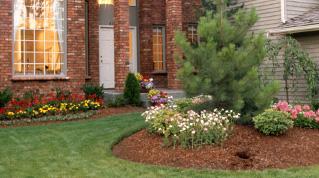 A-1 Landscaping and Maintenance | Aurora Illinois Landscape